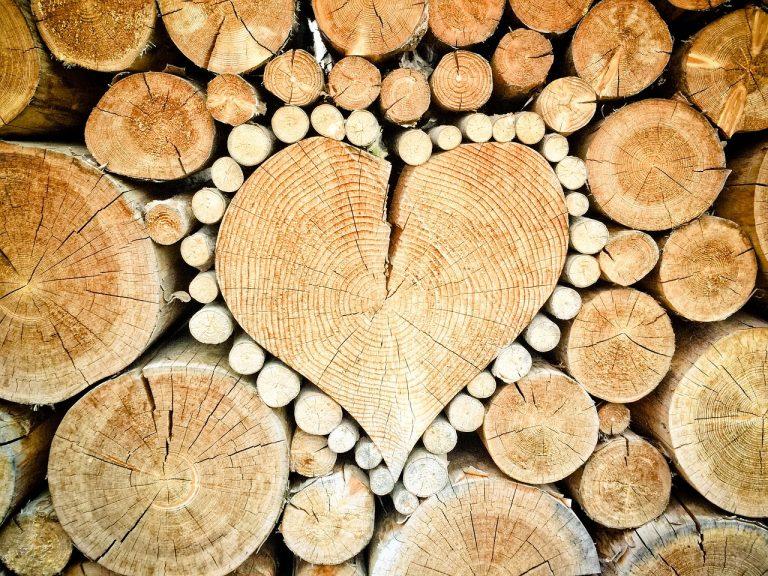Scegli i vantaggi del legno